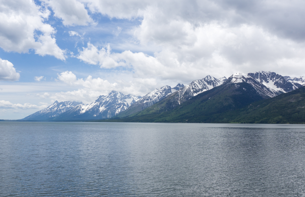 The view from the Jackson Lake Overlook