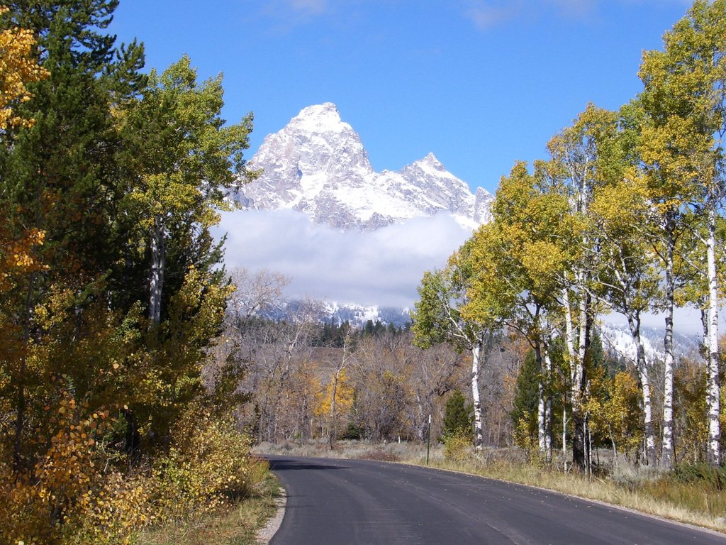 Moose-Wilson Road in Grand Teton National Park
