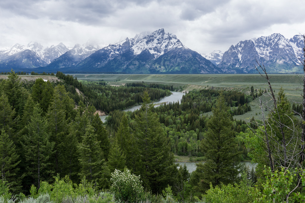 The view from Snake River Overlook in Grand Teton National Park