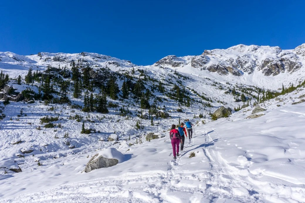 A group of hikers walking up a snowy slope. Learn all about winter hiking and snowshoeing safety before you go.
