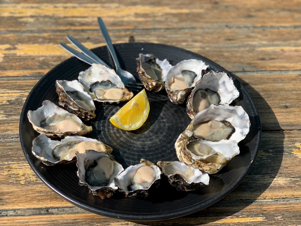 A dozen oysters on a platter at Get Shucked on Bruny Island Tasmania