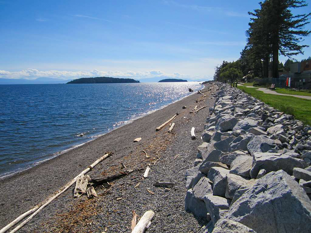 Beach in Sechelt
