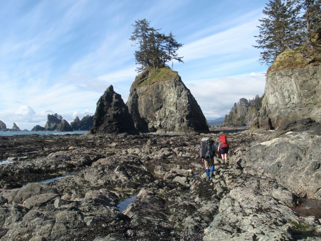 Hikers on the North Olympic Coast trail in Washington. Get the best coastal hiking tips before you try this trail