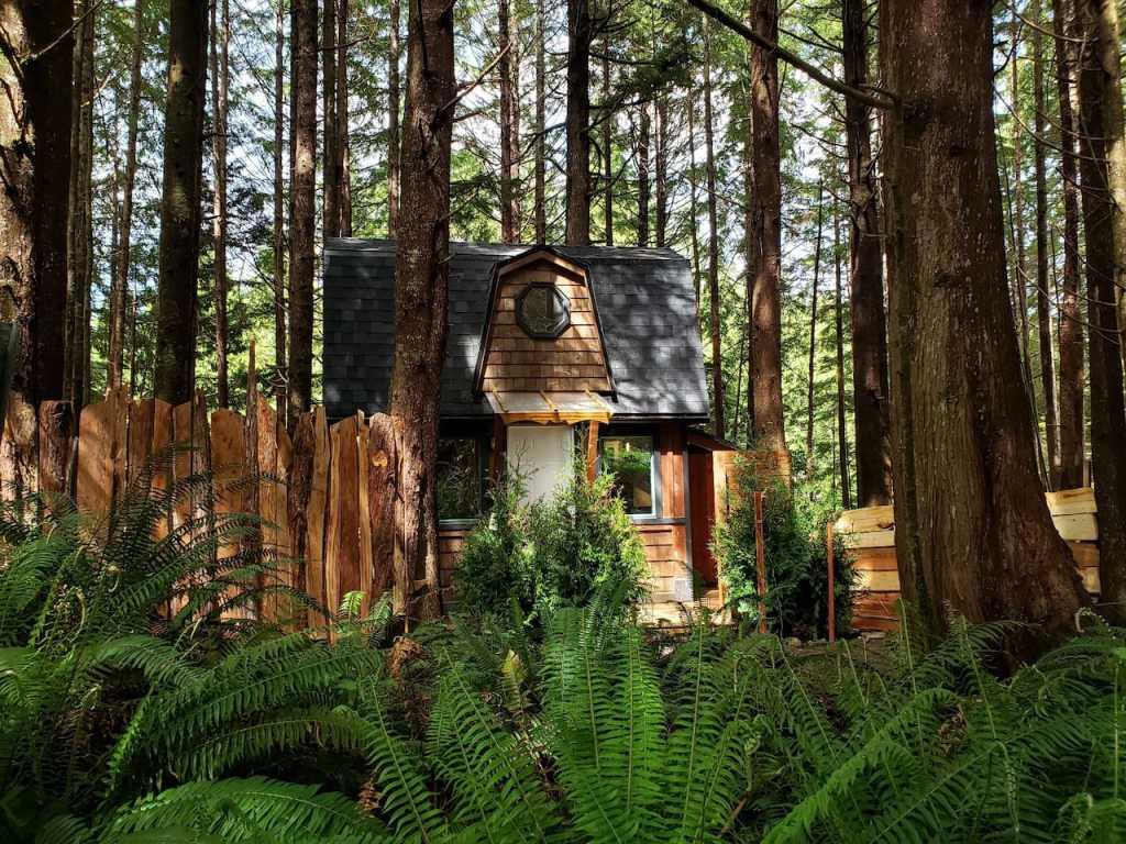 Sapling Cabin near Tofino on Vancouver Island