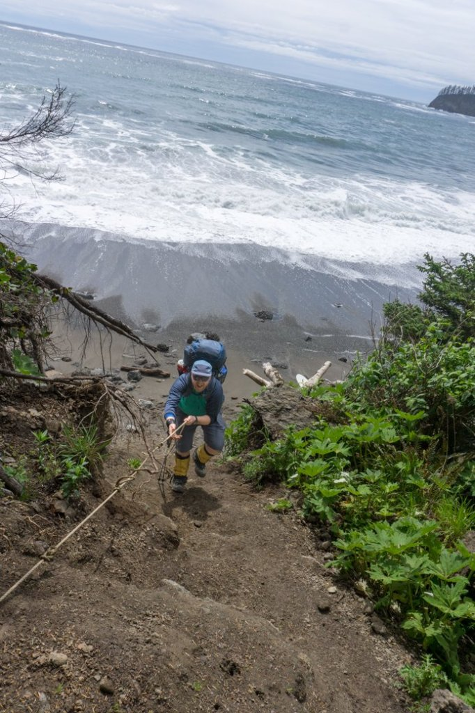 A hiker ascending a fixed rope in Olympic National park. Get tips for coastal hiking before you try this tough trail