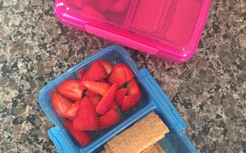 THE REAL TRUTH ABOUT PACKING LUNCHES