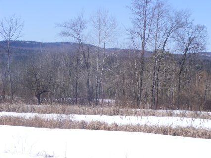 NH Spring Like Day