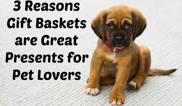3 Reasons Gift Baskets are Great Presents for Pet Lovers