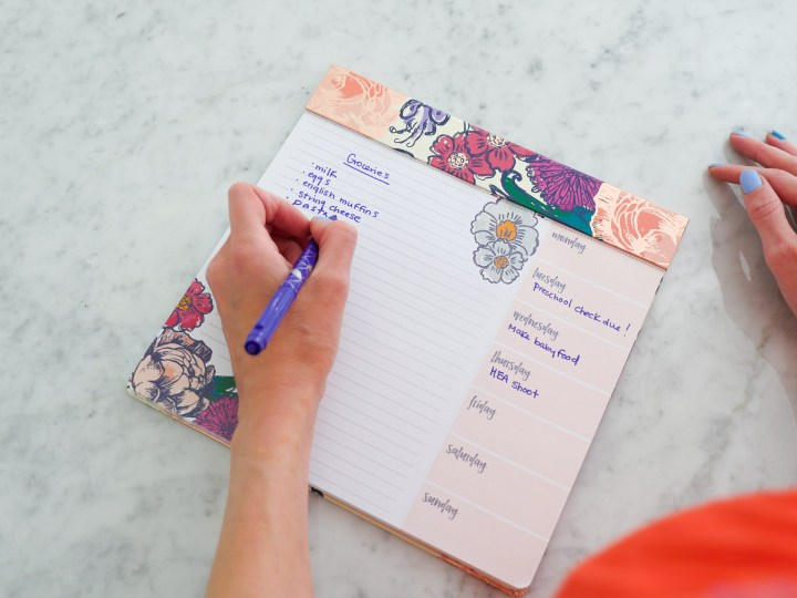 Eva Amurri Martino showcases an Erin Condren schedule pad as part of her monthly obessions roundup