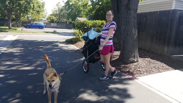 Activities for infants and toddlers walk outdoors with stroller and dog