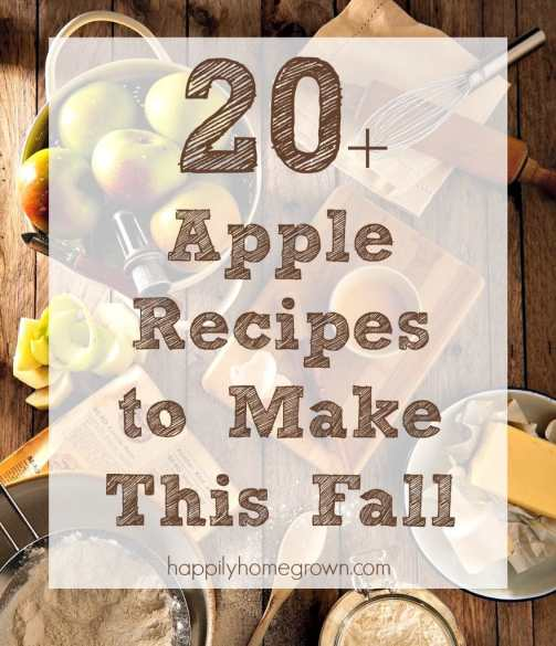 When I think fall flavors, I think apple and warm spices.  Move over pumpkin spice, apples are where it's at!  Check out these 20+ apple recipes to bring fall flavors to your kitchen.