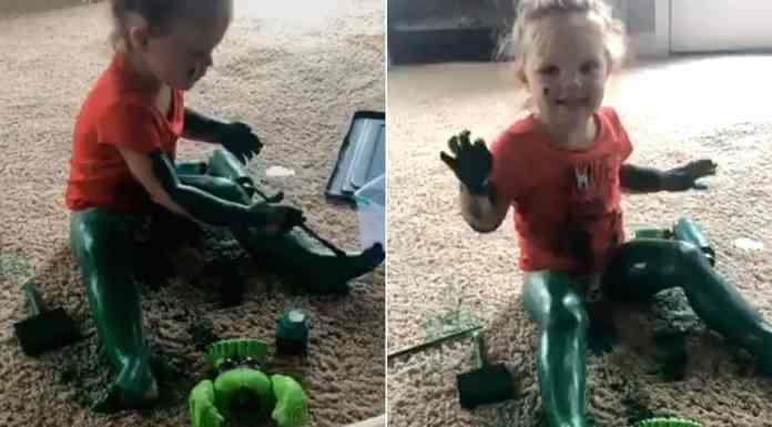 Incredible Hulk toddler