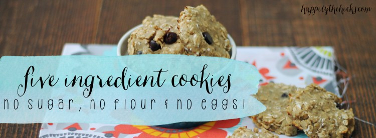 Five Ingredient Cookies