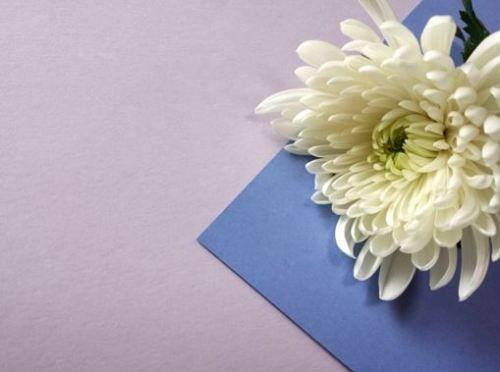 喪中 お歳暮 包装紙