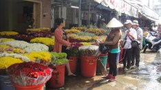 Of flowers and walking lottery vendor!