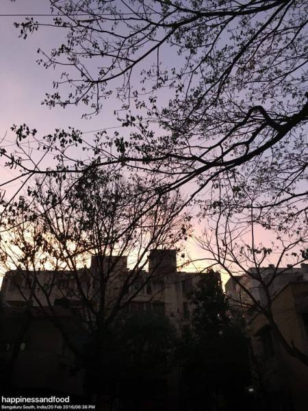 As the sky changes colors