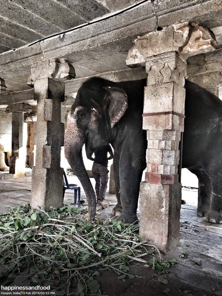 Hampi - Virupaksha Temple