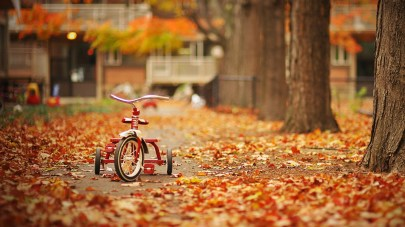 Kid-Tricycle-Autumn-Wallpaper-HD-wallpapers