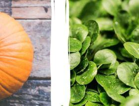 Regional und saisonal Kürbis und Feldsalat