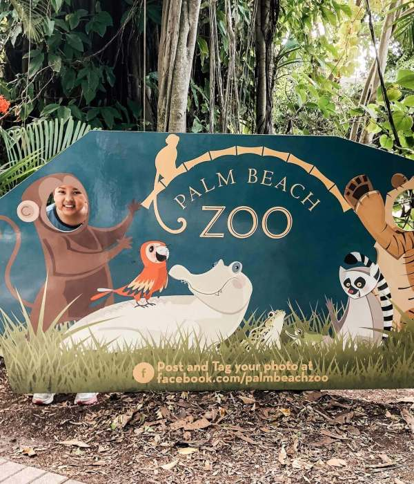 12 Zoo animal craft ideas to do During Spring Break