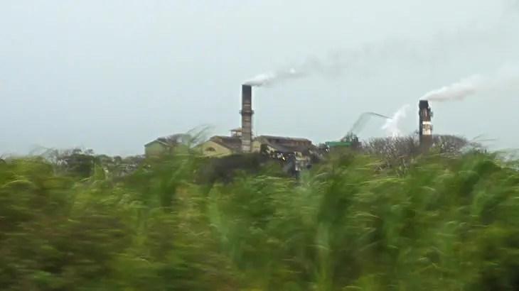 マウイ島最後のサトウキビプランテーション