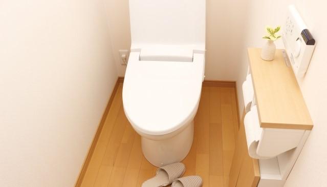 最長1か月間トイレが使えない