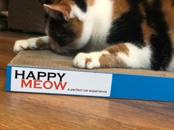 ansamblu-pisici-sisal-plat-pentru-ascutit-gheare