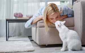 Welche Katze passt zu mir?