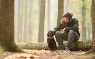 3 Basis-Tipps für den Umgang mit dem Hund
