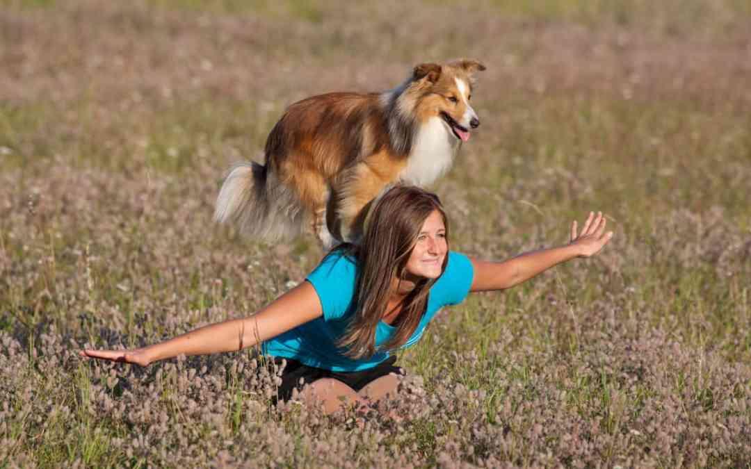 Dog Dancing: Spaß und gutes Training