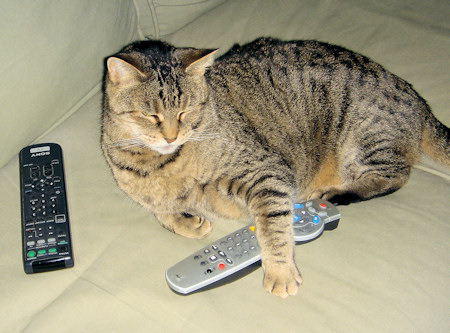 200 channels and nothing