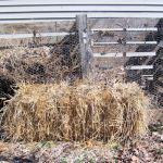 Pallet Compost Bins