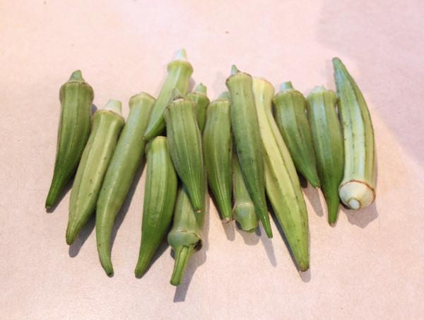 okra harvest from 2011