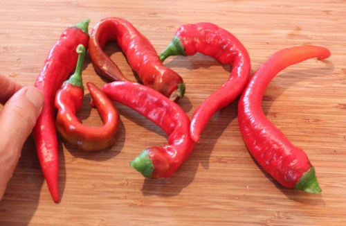 Jimmy Nardello heirloom peppers
