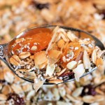 Dry Toasted Muesli
