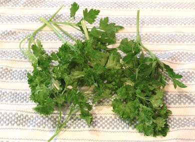 parsley for pesto