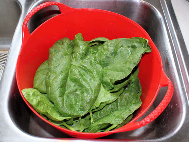 Tubtrug with spinach harvest