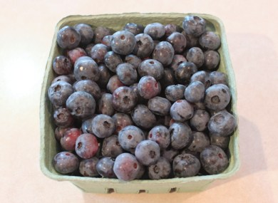 first blueberries of 2013 (from June)