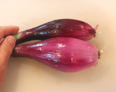 Red Tropea onions
