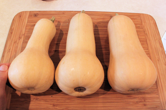 Early Butternut squash