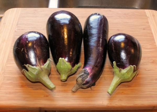 Nadia and Galine eggplant