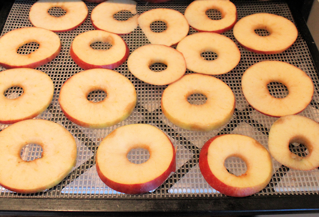 apple slices before drying