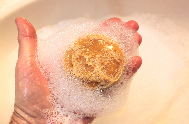 luffa soap with suds