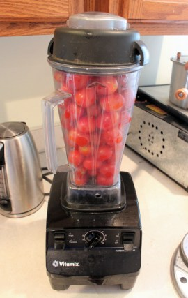 Vitamix Freezer Tomato Sauce