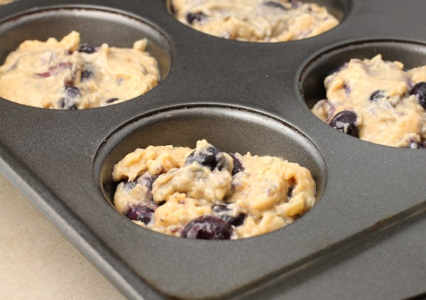 blueberry muffin batter