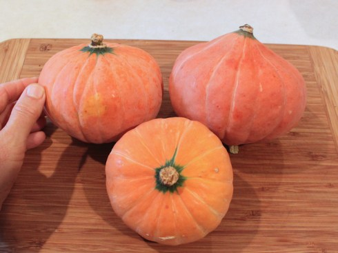 Gold Nugget squashes