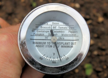 soil temperature