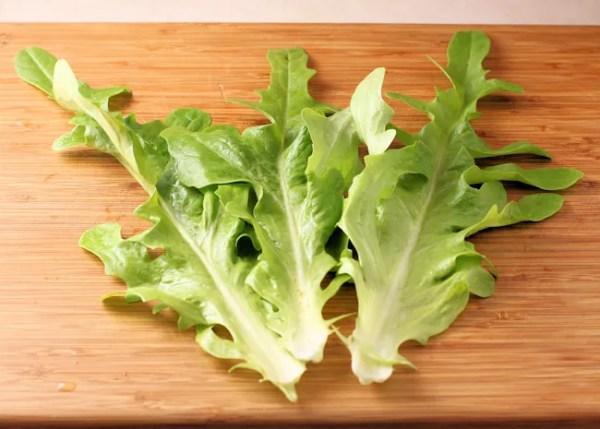 leaves of Radichetta lettuce