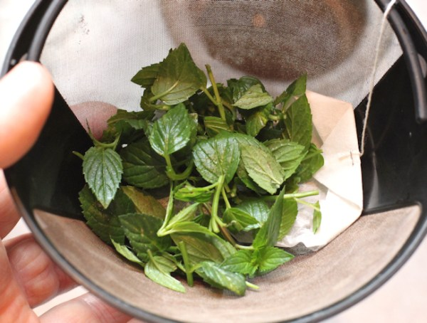 adding herbs in with tea bags