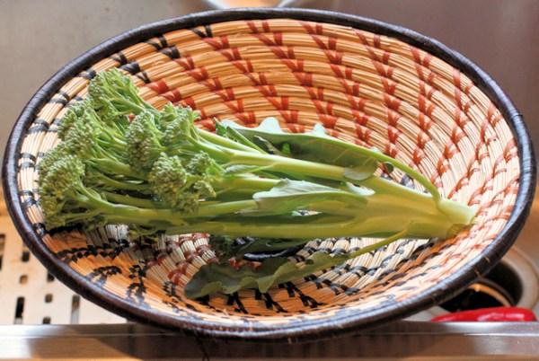 Apollo broccoli